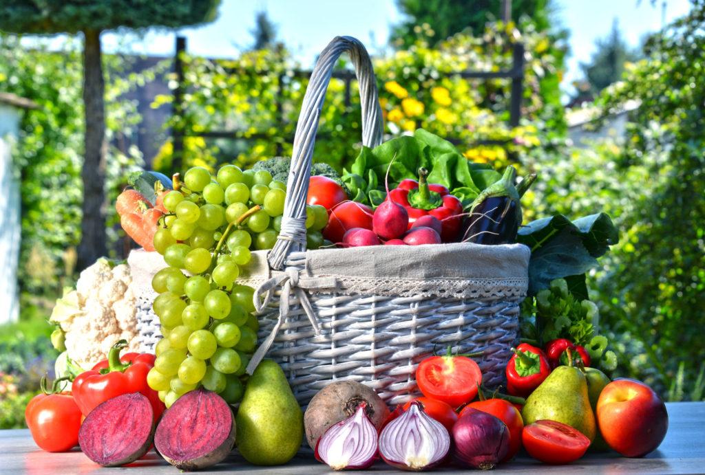 Zelenina aovoce - program Metabolic Balance, Bára Wolfová Balcarová